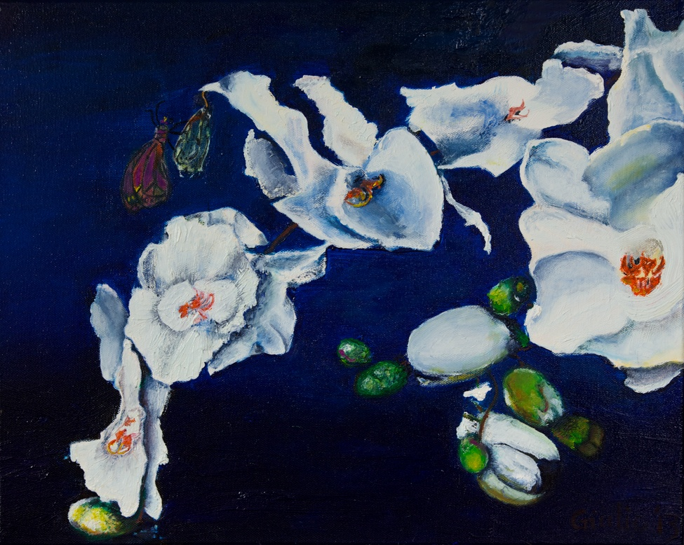 still life of white orchids with butterflly emerging from coccoon